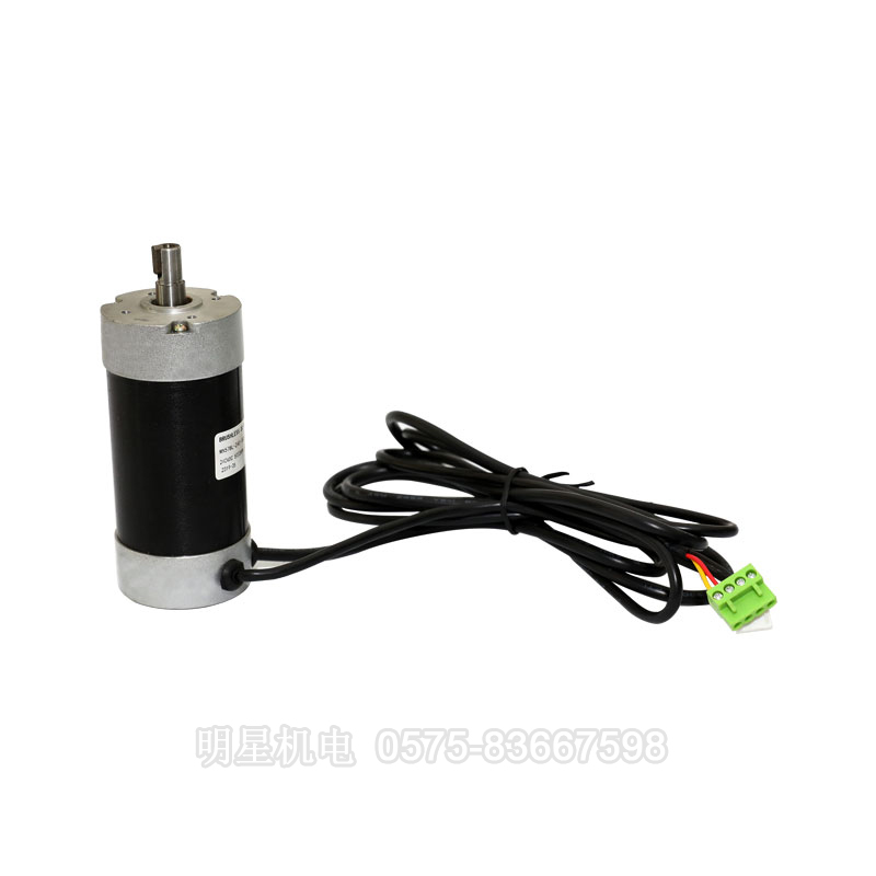 Brushless DC motor 2