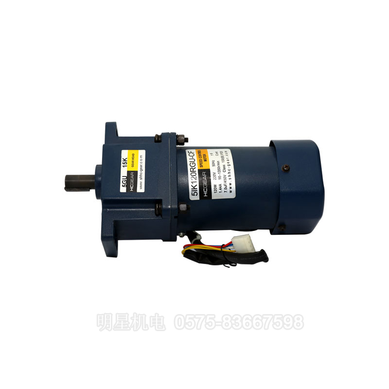 30W-250W Micro gear reduction motor