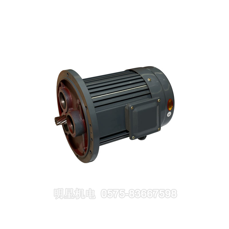 Special motor for gear reducer