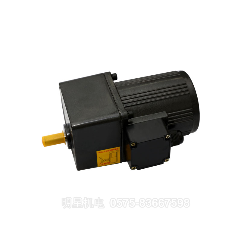 Micro gear reduction motor