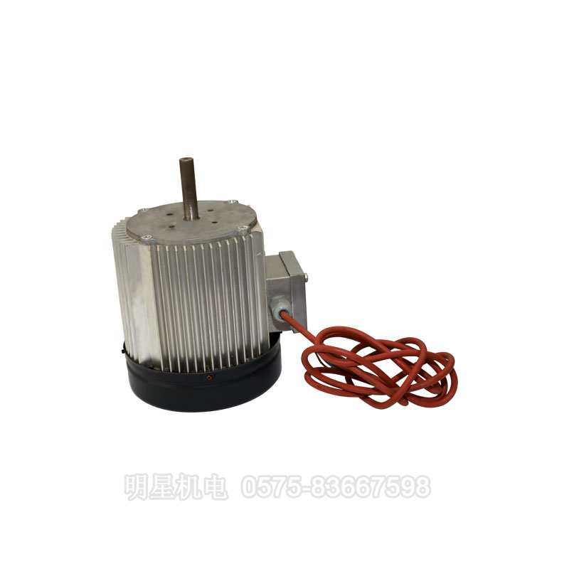 Fan-specific motor