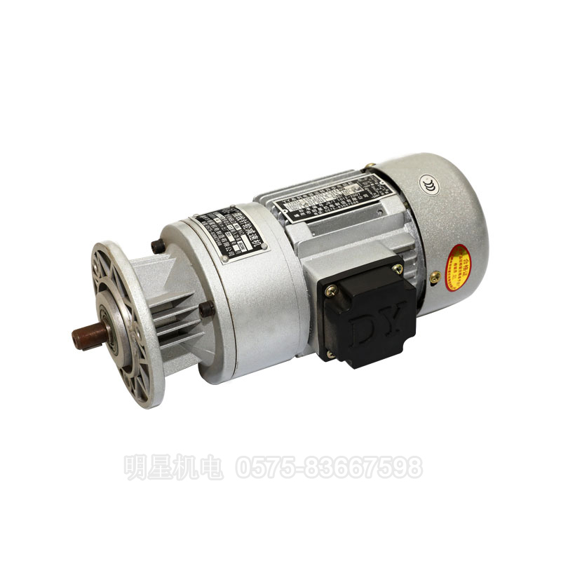 Miniature live gear reduction motor (2)